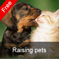 Raising pets